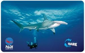 new-project-aware-card-2014-hammerhead-shark-nurkowanie-wroclaw