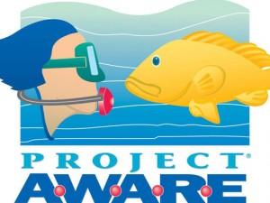 padi-project-aware_padi_aquamatic_wrocvlaw_nurkowanie