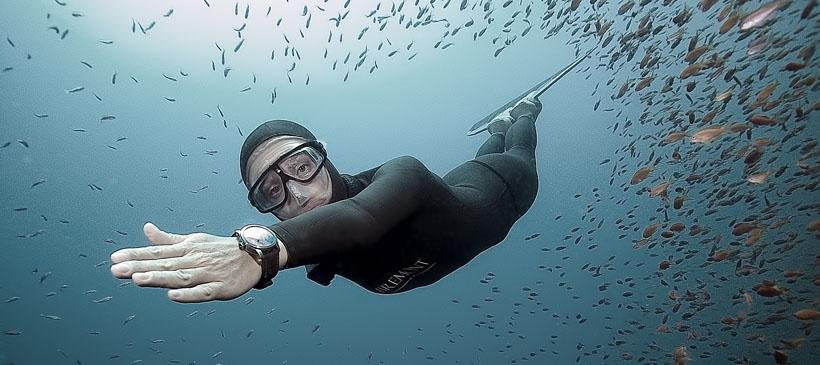dyd-freediving-cruising-in-the-blue_nurkowanie_freediving_sprzet_sklep_nurkowy